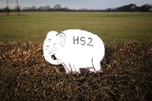 Is HS2 really a white elephant? Image: Getty