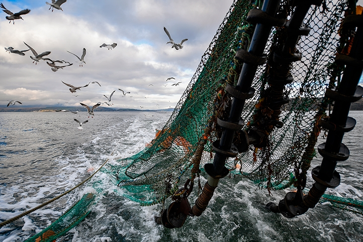 How to stop trawling from trashing the North Sea