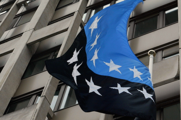 The flag of the European Coal and Steel Community. Image: Getty