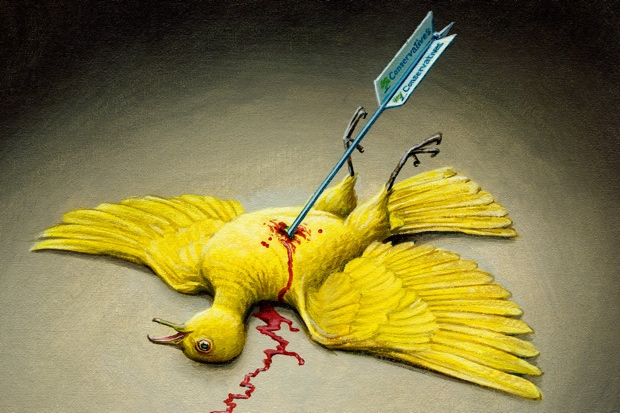 Has four years of government killed the Lib Dems? Illustration: Jonathan Cusick.