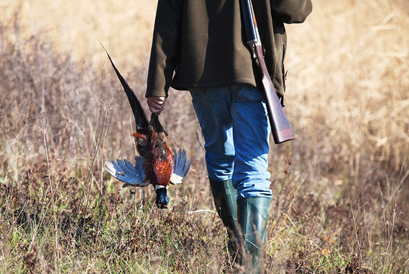 The commercialisation of shooting may kill the whole sport