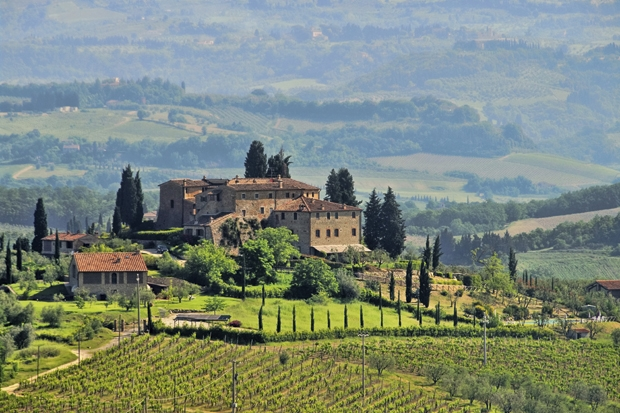 Italian red wine: The start of the affair