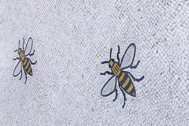 The mosaic bees in Manchester's Town Hall that symbolise hard work and co-operation.