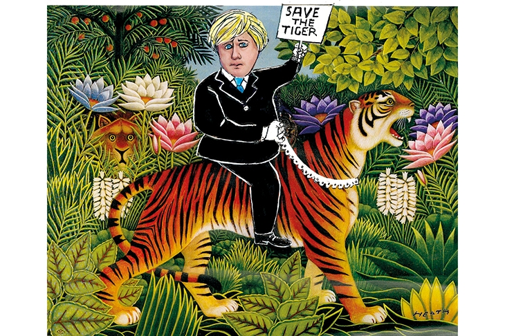 The tiger and me