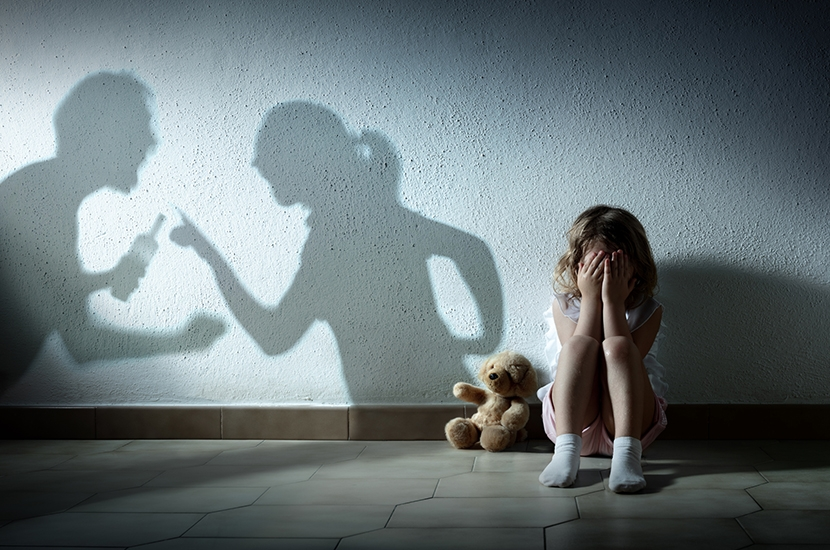 Why hasn't the government done more to protect domestic abuse victims?