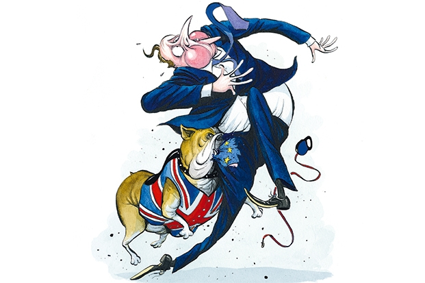 The Tory dogfight