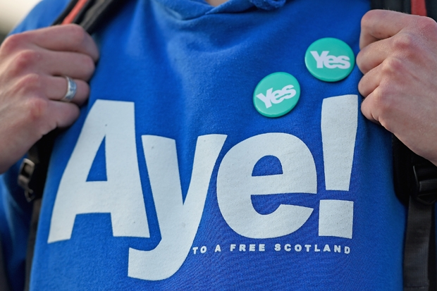 The SNP's 'cybernats' are a modern political scourge – with the zeal of converts