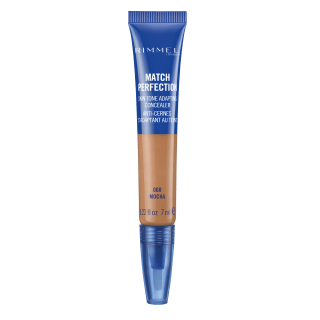 Match Perfection Concealer in 060 Mocha