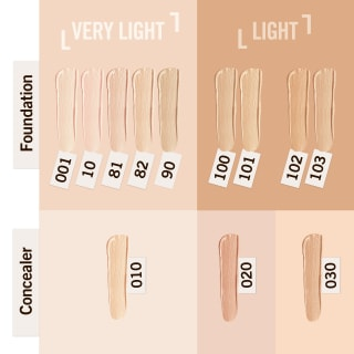 Guide to Match Perfection Concealer shades