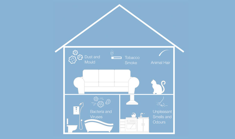 Graphic representation of potential pollutants found within a home