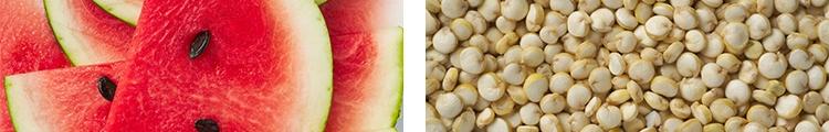 WhatToEat Watermelon Quinoa.jpg