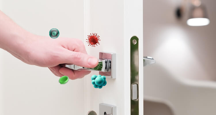 harmful germs and bacteria on doorknobs