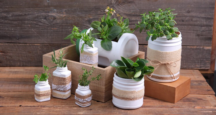 Use containers to grow herbs and vegetables