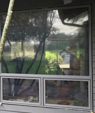 the after side of custom vs builder-grade windows
