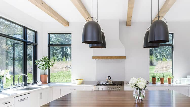 contemporary kitchen with black-trimmed fixed and casement windows