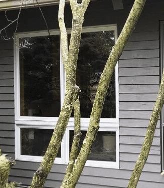 the before side of a custom vs builder-grade windows