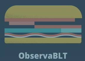 observa-blt.png