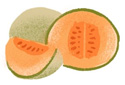 An illustration of a cantaloupe.