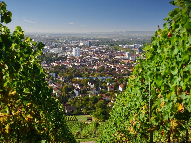 Berlitz Sprachschule Heilbronn