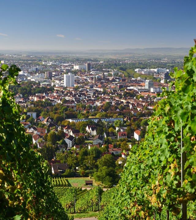 Blick durch Weinberge auf Heilbronn